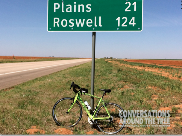 bike / Roswell