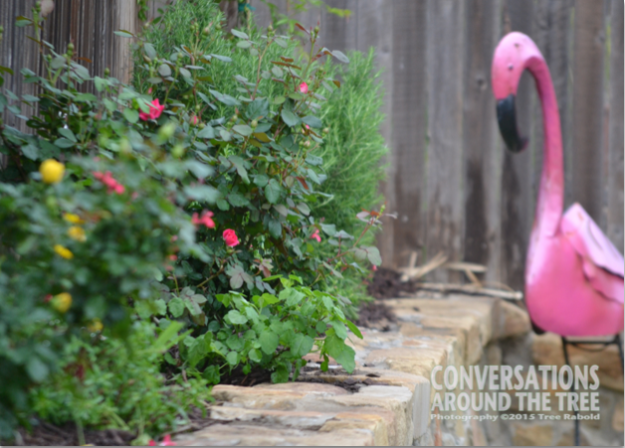 Flamingo overlooks the flowerbed