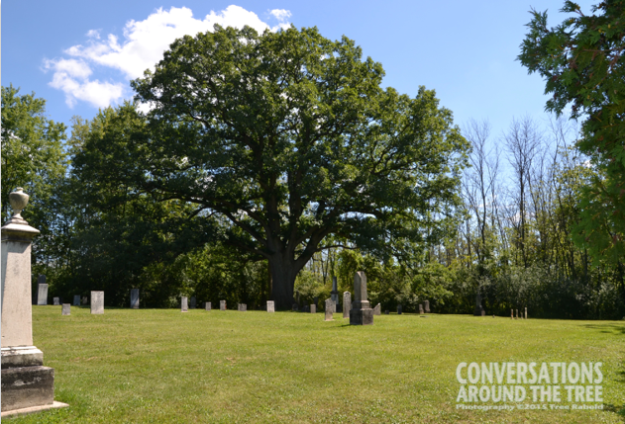Lyon's Creek Cemetery - Niagara Falls Canada