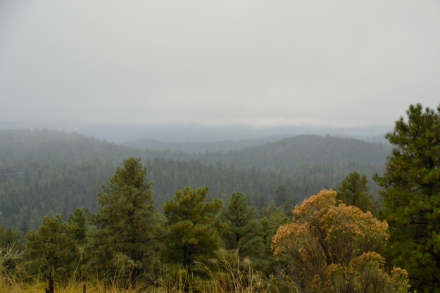 The Mountain View - Ruidoso NM