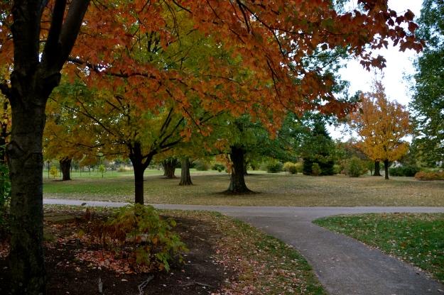 Cox Arboretum - Dayton OH