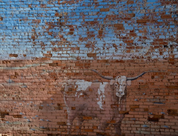 cow wall paint