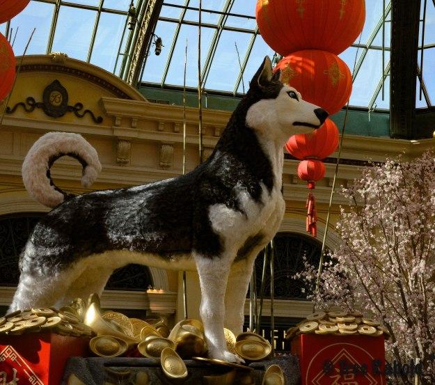 Year og the dog 2
